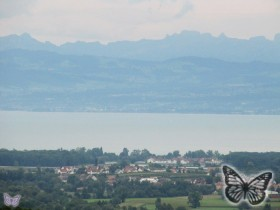 Bodensee August 2011