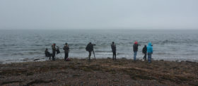 2016 Schottland Chanonry Point bei Moray Firth